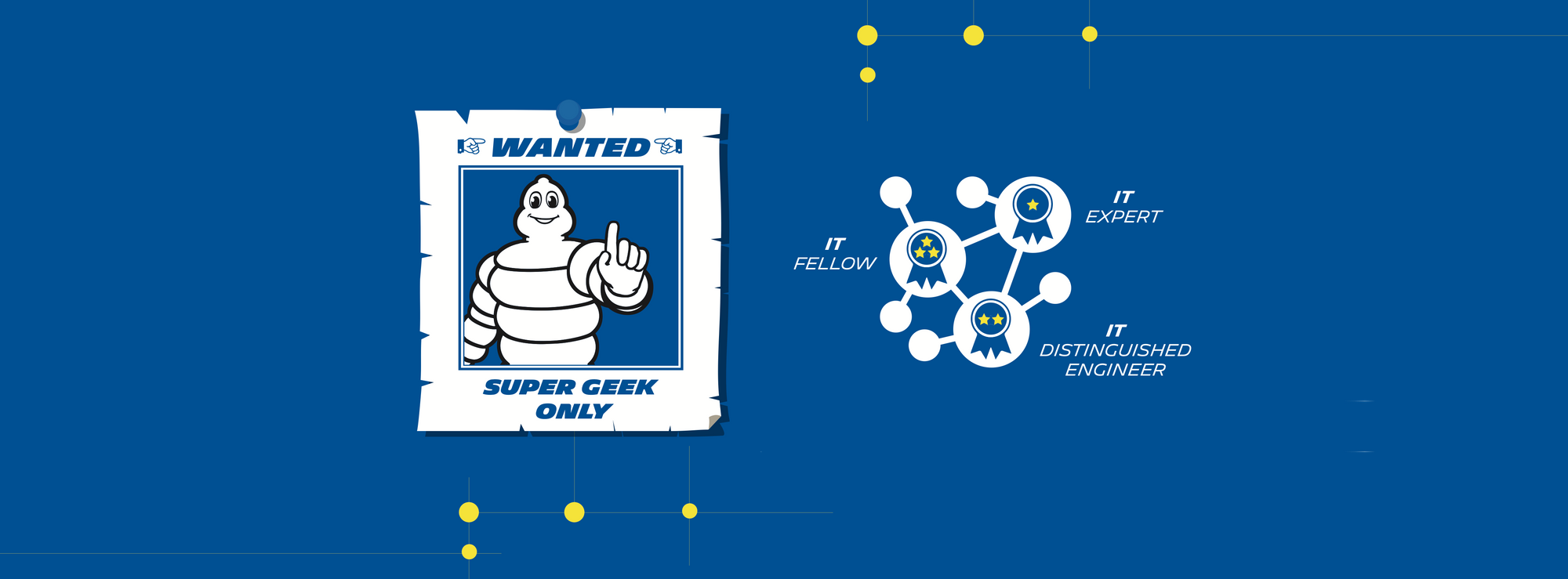 Wanted super geek only (IT FELLOW, IT DISTINGUISHED ENGINEER, IT EXPERT)